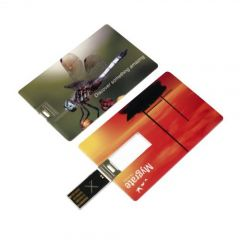 Card Wafer 2 USB FlashDrive