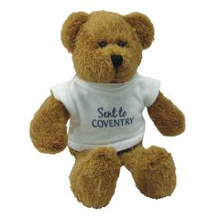Scraggy Bear (7 inches tall) With T-Shirt